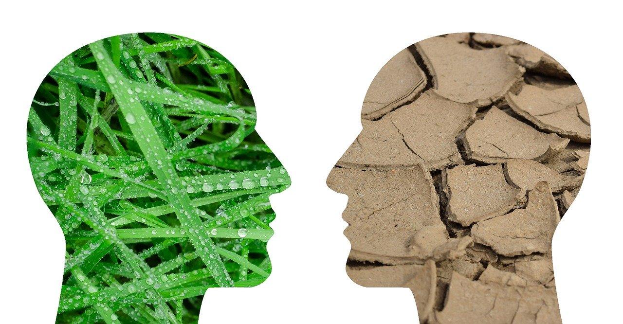 Mnenje EZS o prihodnjem razvoju energetike v RS: Pod »zeleno« črto se bomo našli vsi